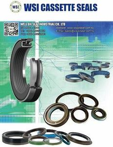 WSI OIL SEAL,CASSETTE SEALS,