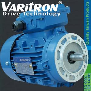 Varitron_V11_Ac_induction_electric_IEC_3_Phase_Motor1