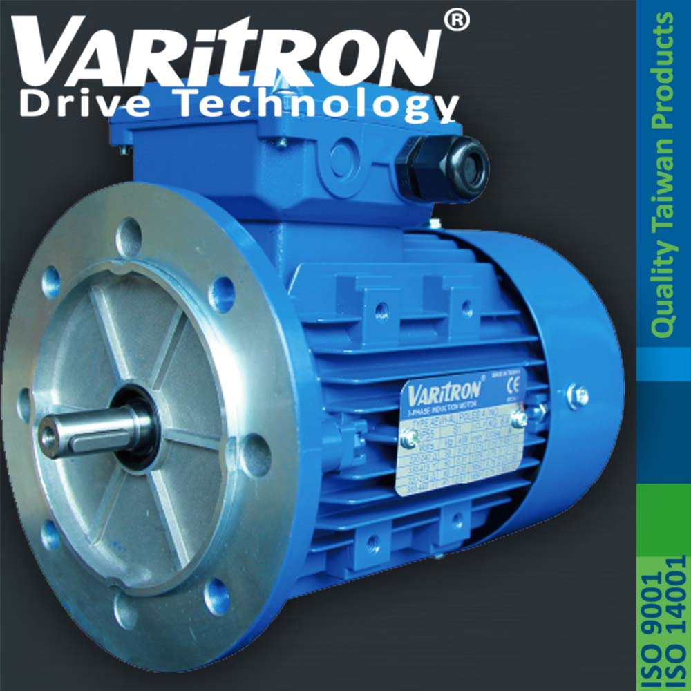 Varitron Ac induction electric IEC 3 Phase Motor|Electrical and ...