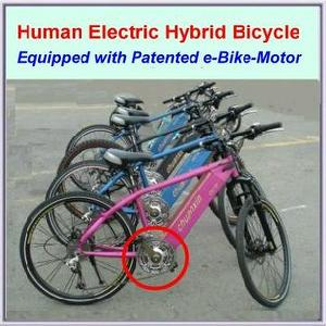 Electric Bicycle with Center Drive Motor
