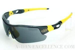 [copy]sports sunglasses, sporting eyewear, PC Gray lenses