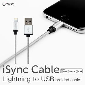 Nylon Braided Lightning Cable for iPhone (Sliver)