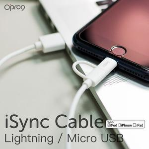2in1 Lightning and Micro USB Cable (White)
