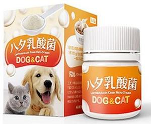 LCH Lactobacillus For pets