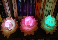 led lous BI_lotus001