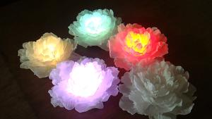 led poeny flower light